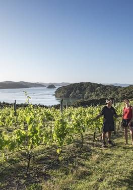 Classic New Zealand Wine Trail Self Drive - from Manchester
