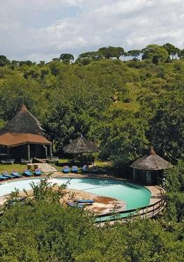 Travel with friends and save £450 per person on a safari holiday